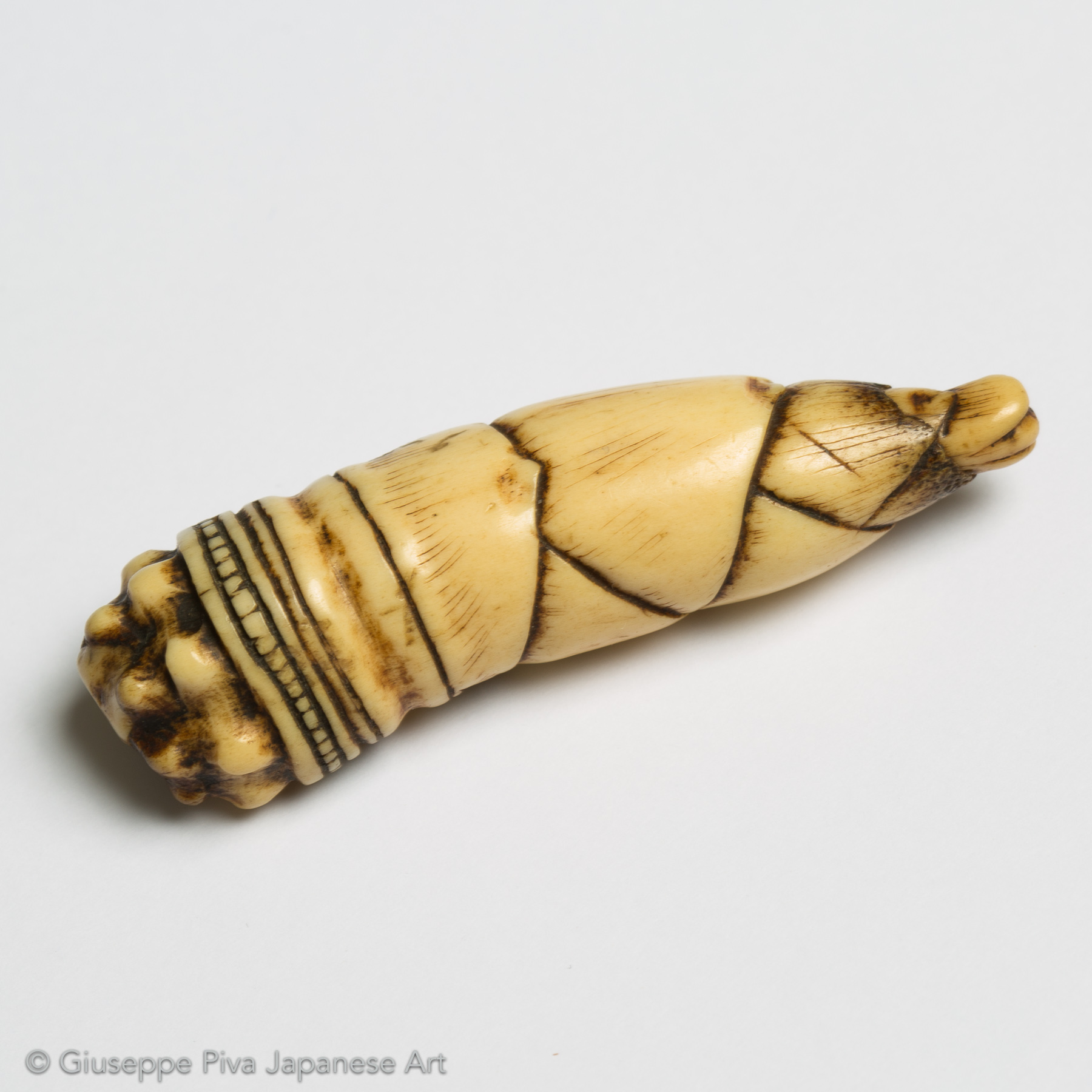 Stag antler netsuke of a bamboo shoot
