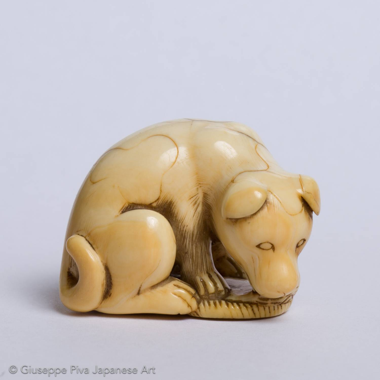 Netsuke avorio con cane